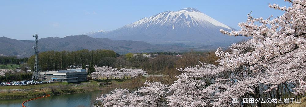 四十四田ダムから見た岩手山