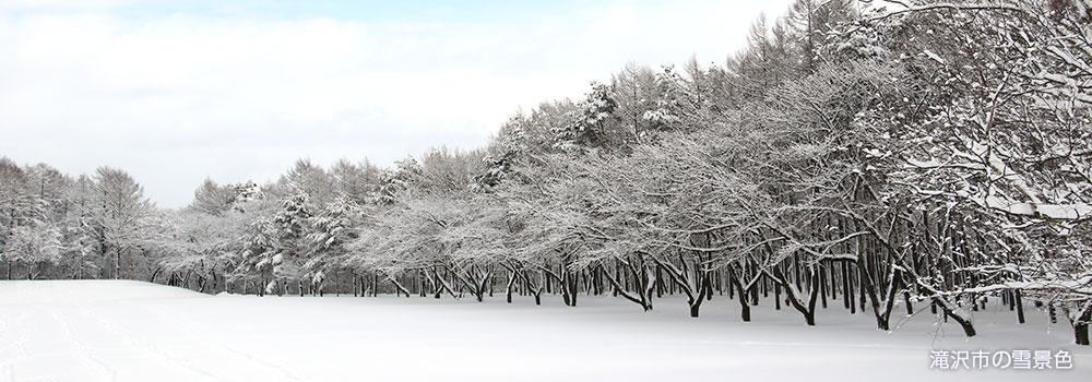 滝沢市の雪景色